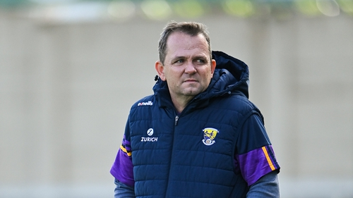 Davy Fitzgerald was speaking on The Sunday Game.