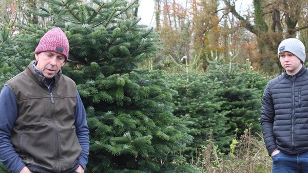 Christmas tree grower Derek Walsh enlisted the help of Jordan Casey to get his Christmas trees online