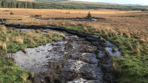 The rivers are black in colour as a result of suspended peat pollution