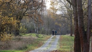 The bones were found by people strolling in a park in the north-eastern Pankow district on November 8, with forensic analysis later showing them to be human remains