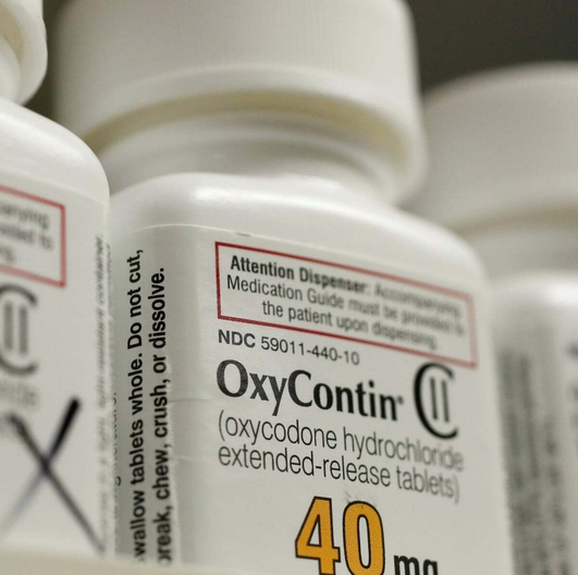 Oxycontin makers admit charges
