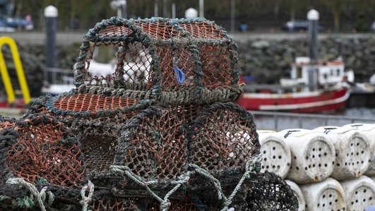 Trawler catches to be weighted at dockside