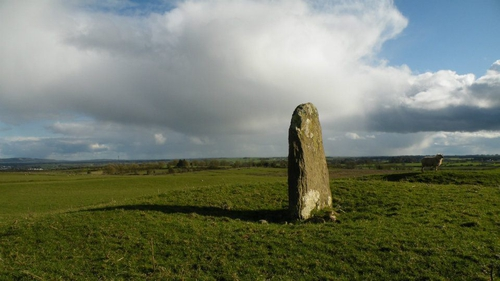 A red sand stone located on farmland in Co. Roscommon said be the burial place of Daithi, the last pre-christian king of Ireland. Photo: Gary Dempsey