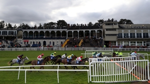 The runners and riders pass the grandstand at Ludlow