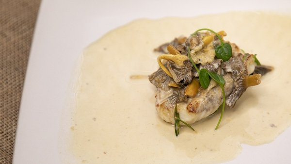 JP McMahon's monkfish with brandyand mushrooms from Today with Maura and Dáithí.