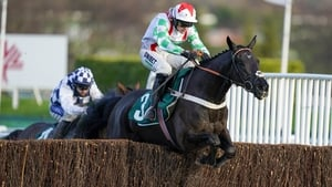 Mister Fisher jumps the last in the feature at Cheltenham