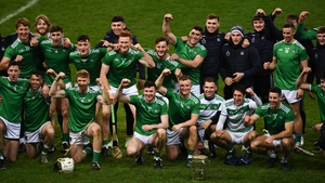 It was a second title for Limerick in three seasons