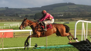 Holymacapony made a perfect start to life under Rules at Punchestown