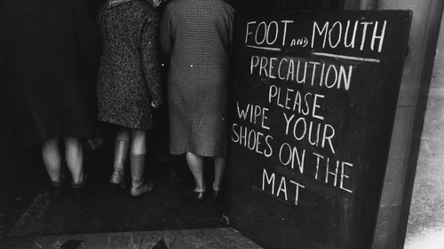 Irish people were asked not to return home in 1967 to prevent the spread of foot-and-mouth disease