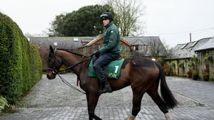 Al Boum Photo will be looking to become the first horse since Best Mate to hat-trick of Gold Cups