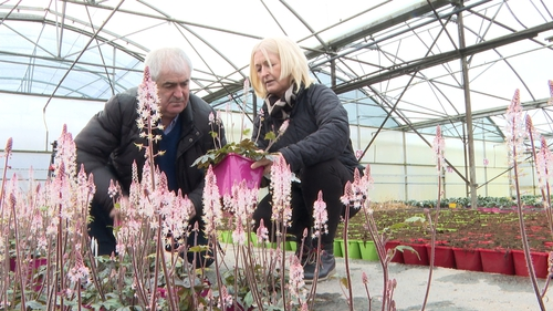 Joe and Nuala Young of Young Nurseries in Co Limerick
