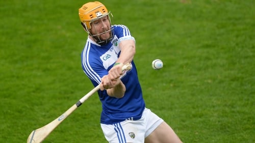 Healy made his senior hurling debut with Laois in 2005, and was with the senior football panel last year before suffering a knee injury