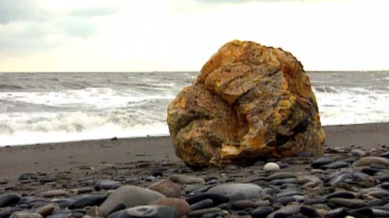 Mystery Object On Wicklow Beach