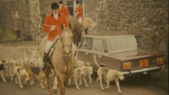 Westmeath fox hunt (1981)