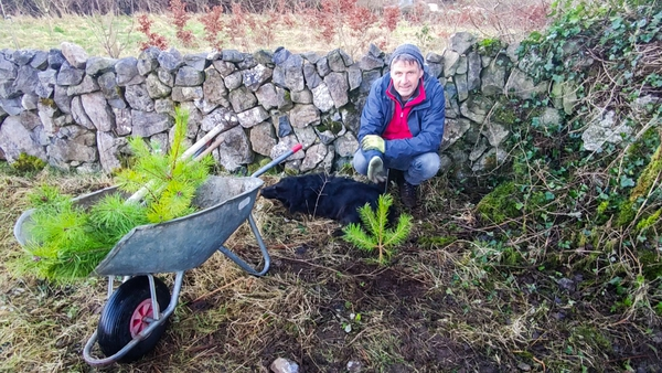 Brendan Dunford in the Burren with the saplings