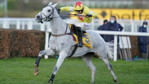 Politologue is an 8-1 shot with most firms for the Queen Mother Champion Chase