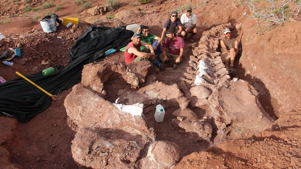 Excavation to uncover, possibly, the largest creature to walk the earth continues. Courtesy: Dr. Jose Luis Carballido