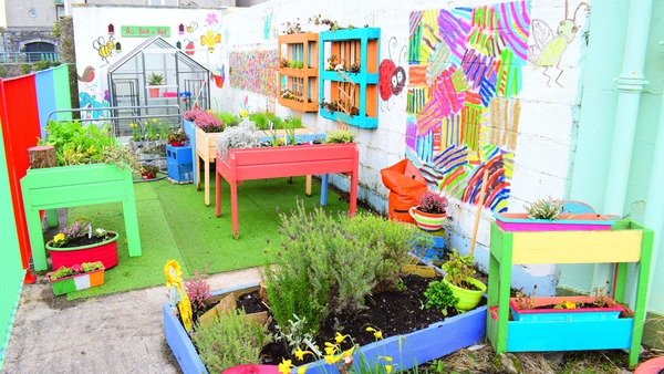 Last year's winners, St Patrick's primary school in Galway, created a Vertical Garden