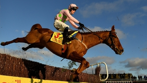 Brahma Bull goes in the Goffs Thyestes Chase at 3.25pm