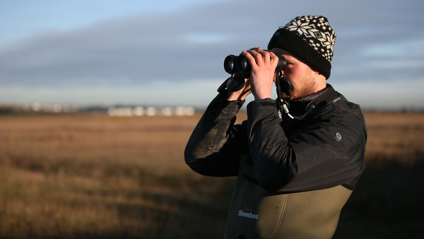 A member of a Birdwatch Ireland led team during a project off Bull Island in 2016
