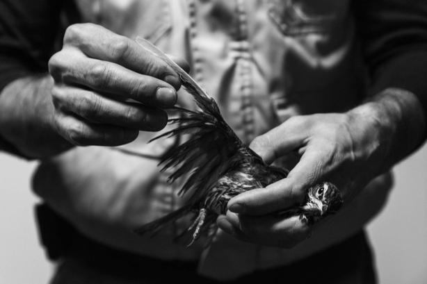 (Irene Facoetti, Italy, Student Shortlist, 2021 Sony World Photography Awards/PA)