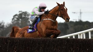Monkfish looked a future Gold Cup winner when taking the Flogas Novice Chase