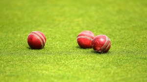 Cricket balls were one of the items analysed in the study
