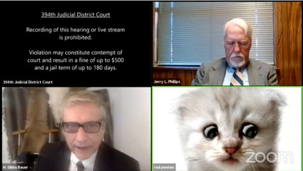 """""""That's why I had to tell the judge that I'm not a cat, because the cat was responding in the same way I was."""""""