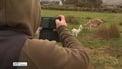 Kerry farmer's goat videos go viral