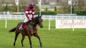 Robbie Power riding Tiger Roll in November