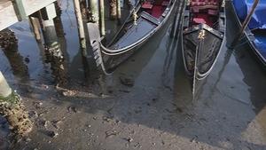 Gondolas stuck in low tide in a Venetian canal today