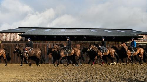Denise Foster will take the reins at Gordon Elliott's stables
