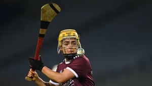 'I think it can only have positives for camogie and ladies football'