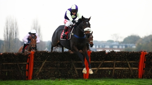 Adrimel suffered the only defeat of his career in last year's Champion Bumper at the Festival