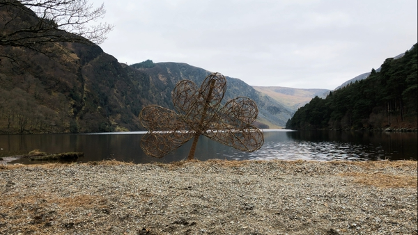 One of Aoife Patterson's willow shamrocks at Glendalough