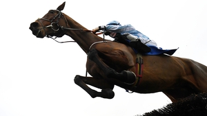 Honeysuckle was a winner at the Cheltenham meeting 12 months ago when coming out on top in a titanic battle with Benie Des Dieux in the Mares' Hurdle, but is in against the boys this time - as well as fellow mare and last year's winner Epatante