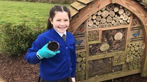 Molly McPhillips said she wanted her garden to be 'magical and friendly'