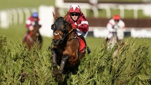 Keith Donoghue and Tiger Roll clear the last to win the Glenfarclas Chase