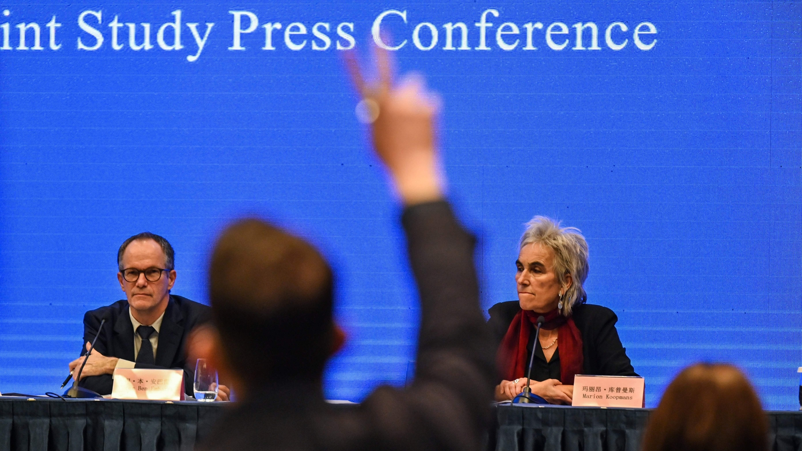 Image - A press conference held at the conclusion of the WHO visit to the the city of Wuhan
