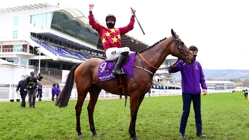 Gold Cup hero Minella Indo was one of 23 Irish-trained winners at the Cheltenham Festival last week