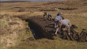 Bord na Móna has denied that it is stopping people on these bogs from cutting turf, and has said it is wrong to suggest that they are doing so