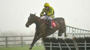 Skyace cost a paltry £600 before going on to win four times