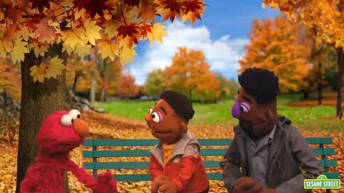 It comes as part of a new series of videos called the 'ABCs of Racial Literacy' (Image: Sesame Street)