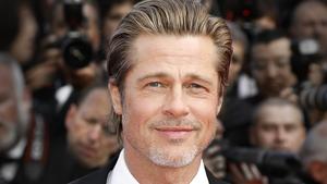Brad Pitt is set to play assassin Ladybug in Bullet Train
