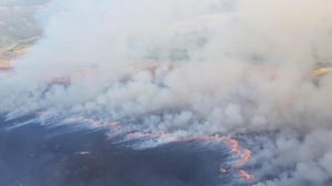 An aerial photograph of fires in the Slieve Bloom Mountains last year (Pic: Coillte)