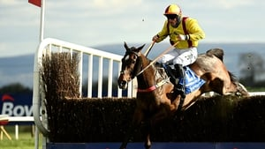 Freewheelin Dylan and Ricky Doyle jumps the last en route to victory