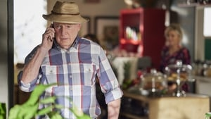 Ray Meagher as Alf Stewart on Home and Away.