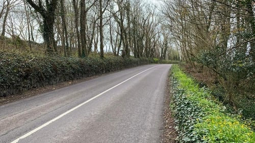 Garda was attempting to speak to the driver of the car when she was dragged along the road for around 30 metres