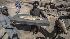 Workers carrying a fossilised fish uncovered at the archaeological site of a 3,000-year-old city