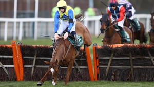 Hometown Boy pecks on landing after jumping the last in the EFT Systems Handicap Hurdle